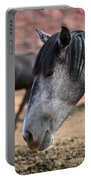 Grey Mare Portable Battery Charger