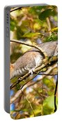Grey Squirrel - Impressions Portable Battery Charger