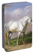 Grey Stallion Portable Battery Charger