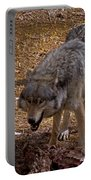 Grey Wolf   #2637-signed Portable Battery Charger