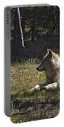 Grey Wolf   #3273-signed Portable Battery Charger