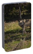Grey Wolf   #3315 Portable Battery Charger