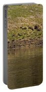Grey Wolf   #4427 Portable Battery Charger