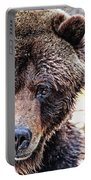 Grizz Portable Battery Charger