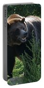Grizzly-7759 Portable Battery Charger