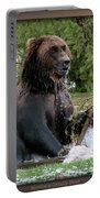 Grizzly Bear 08 Portable Battery Charger