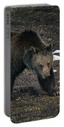 Grizzly Bear  #2510 Portable Battery Charger