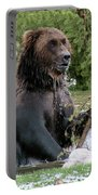 Grizzly Bear 6 Portable Battery Charger