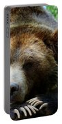 Grizzly Bear At Rest In Colorado Wildneress Portable Battery Charger