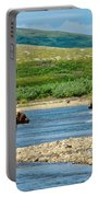 Grizzly Bear Communication In The Moraine River In Katmai  Np-ak Portable Battery Charger