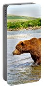 Grizzly Bear Determined To Catch A Salmon This Time In The Moraine River  Portable Battery Charger
