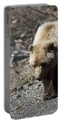 Grizzly By The Road Portable Battery Charger