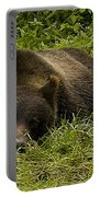 Grizzly Cub  #0863 Portable Battery Charger
