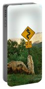 Grizzly Cubs Portable Battery Charger