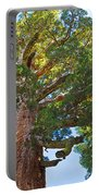 Grizzly Giant Sequoia Top In Mariposa Grove In Yosemite National Park-california    Portable Battery Charger