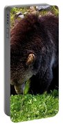 Grizzly Grazing Portable Battery Charger