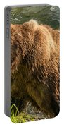 Grizzly On The River Bank Portable Battery Charger