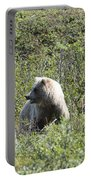 Grizzly One Portable Battery Charger