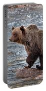 Grizzly River Portable Battery Charger
