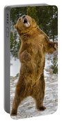 Grizzly Standing Portable Battery Charger