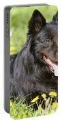 Groenendael Dog Portable Battery Charger