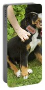 Grooming Bernese Mountain Puppy Portable Battery Charger