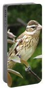 Grosbeak Portable Battery Charger