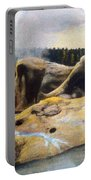 Grotto Geyser Yellowstone Np 1928 Portable Battery Charger