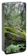 Ground Cover Portable Battery Charger