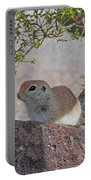 Ground Squirrel On Basalt Portable Battery Charger