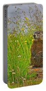 Groundhog At Point Amour In Labrador Portable Battery Charger