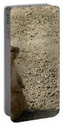 Groundhog With Shadow Portable Battery Charger
