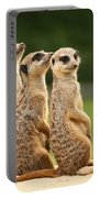 Group Of Meerkats Portable Battery Charger