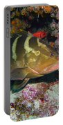Grouper Portable Battery Charger