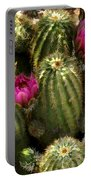Grouping Of Cactus With Pink Flowers Portable Battery Charger
