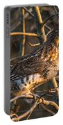 Grouse In A Tree Portable Battery Charger