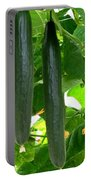 Growing Cucumbers Portable Battery Charger