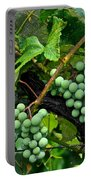Growing Season Portable Battery Charger by Frozen in Time Fine Art Photography