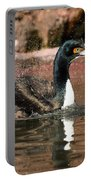 Guanay Cormorant Portable Battery Charger