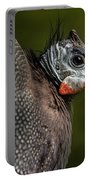 Guineafowl Portable Battery Charger