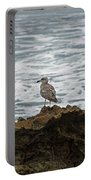 Gulls Podium  Portable Battery Charger