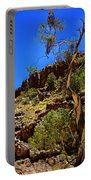 Gum Tree At Ellery Creek V2 Portable Battery Charger