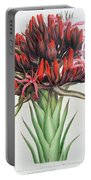 Gymea Lily Portable Battery Charger