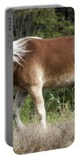Haflinger 1 Portable Battery Charger