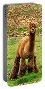 Hairy Brown Gumby Aka Brown Alpaca Portable Battery Charger