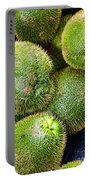 Hairy Peary Chayote Squash By Diana Sainz Portable Battery Charger