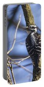 Hairy Woodpecker - Female Portable Battery Charger