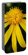 Half Yellow Portable Battery Charger