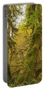 Hall Of Mosses 3 Portable Battery Charger