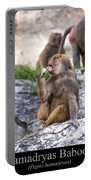 Hamadryas Baboon Portable Battery Charger